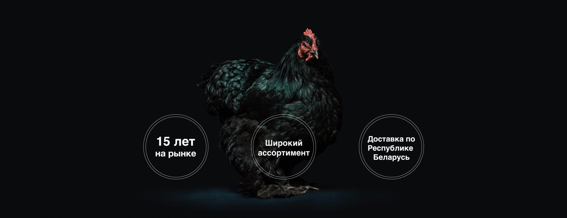Преимущества компании Биотехпром. Ветеринарные препараты